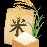 ご飯のおいしい炊き方【お米の計量と水加減がキモ】